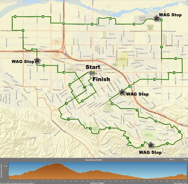 RUFF 2015 31 mile map